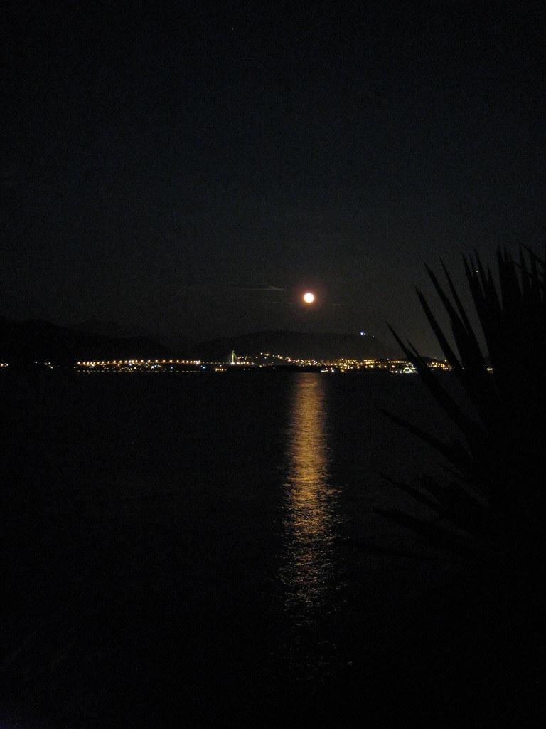 Camino de luna