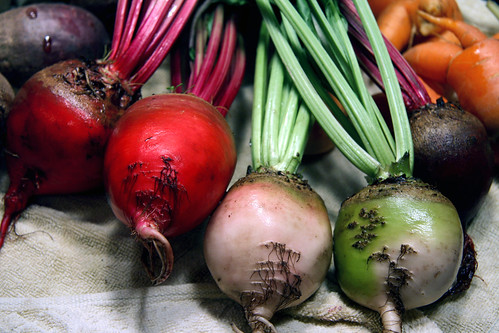 harvest 3 - beets