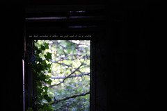 (Megan Caros) Tags: door sunlight abandoned oregon 50mm lyrics bokeh ivy oldhouse crooked modestmouse glenedenbeach missedtheboat