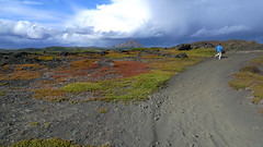 Running in quicksand in Myvatn (grapefruit_and_coffee) Tags: iceland myvatn