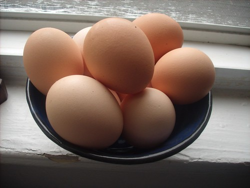 Eggs on the Windowsill