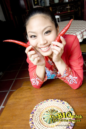 michelle ng as little nyonya