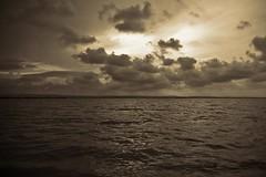 beach baby (bachmont) Tags: sky espaa sun sol water valencia sepia clouds spain agua horizon best cielo nubes horizonte albufera comunidadvalenciana blueribbonwinner platinumphoto rubyphotographer photographersworldbestfriends