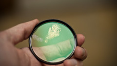 Fingerprint (Ricky Romero) Tags: glass hand fingers fingerprints oil filters aggravating canonef50mmf14usm
