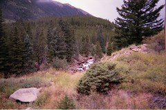 Keystone-03 (Les_Stockton) Tags: mountain tree film nature analog 35mm landscape scenery colorado scan resort keystone minoltasrt101 canoscan8800f