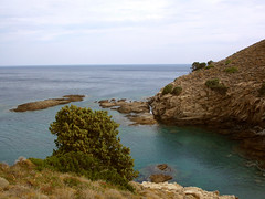 it hurts to sell (3) (angeloska) Tags: ikaria juniper rahes vathepotamia landonsale