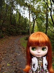 Autumn. (Mery tena un corderito) Tags: autumn red forest hair october doll dana asturias willow bosque otoo blythe octubre takara pelirroja elora salas vsmash