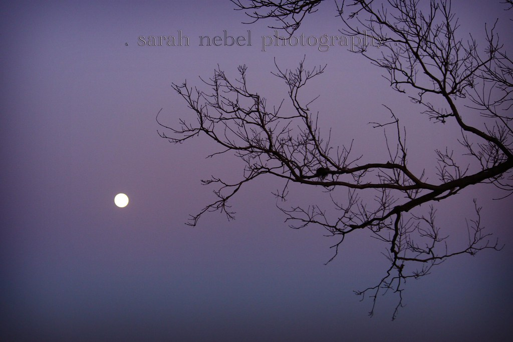 . full moon .