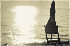 Fine di una giornata estiva, Marina di Ugento, Puglia (william eos) Tags: desktop city trip travel camping light sea summer vacation bw italy holiday art tourism water colors canon landscape geotagged photo europa europe italia mare william wallpapers fotografia acqua turismo colori sedia 2009 viaggio salento puglia biancoenero vacanze città sfondo tema campeggio photografy ombrellone viaggiare photocard nicepictures bellefoto nicepicture rivadiugento marinadiugento canoneos450d ef135mmf28withsoftfocus williamp sfondiperdesktop williameos williamprandi