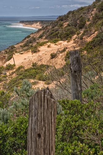Portsea Cliffs