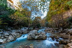 Janne River Lebanon (Paul Saad) Tags: lebanon kartaba qartaba jbeil river water nature landscape green nikon wide angle trees janne creek stream forest lake