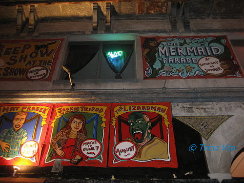 New sideshow banners by Marie Roberts on Coney Island USA's Building advertise this summer's special guest freaks. Photo © Tricia Vita/me-myself-i
