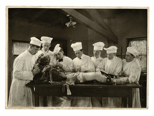 """Rite of Passage in American Medicine 1880–1930"""" on Science Friday"""