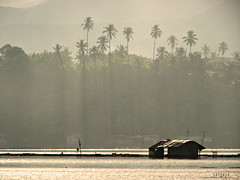 : house on water (Lakad Pilipinas) Tags: morning house lake reflection water silhouette gold golden fishing fisherman asia village philippines floating calm tropical serene raft rays laguna southeast sanpablo luzon nipa sampaloc flickrexplore sevenlakes canonpowershots3is nikond80 nikkor1855mmvr audioscience sangoyo christianlucassangoyo lakadpilipinas