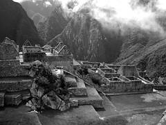 Machu Pichu (batson1) Tags: mountain peru machu pichu
