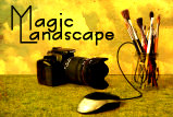 Magic Landscape