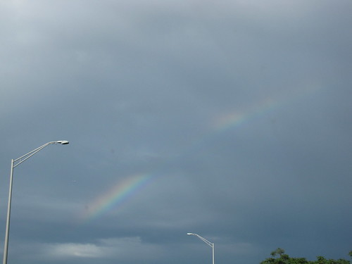 quincy rainbow