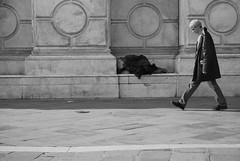 (-_-_-_-_-_-_______________) Tags: poverty life venice neglect walking walk urbanjungle society venezia rejected crisis consciousness tramp vita indifference povert conscience sensibility camminare abbandono disregard societ indifferenza abbandonato coscienza vagabondo disequilibrium camminando sensibile estremi squilibrio bwartaward