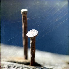 ye old classic nail in the board shot (Maureen F.) Tags: wood blue classic texture dof bokeh board nail rusty nails squared cliche nailed onblue nailedit texturesbylesbrumes hadtopostonenailshotfortherecord nailkehyesthankssash