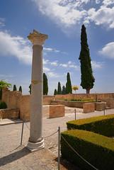 Itlica - Santiponce - Sevilla (Saulo Alvarado) Tags: sevilla columna santiponce itlica itlica
