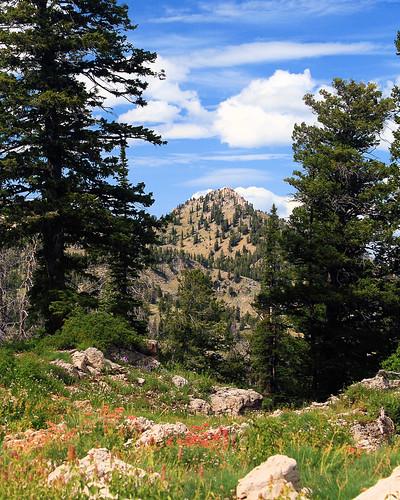 Mt Magog, Utah
