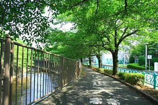 町田樹 画像42