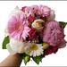 Peonies, Gerbera Daisies, Roses
