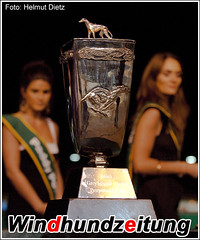 Irish Greyhound Derby - Trophy
