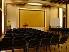 Conacul Domnesc - Sala conferinte