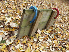 Closed For Season (edisonbaines) Tags: autumn fall october horseshoes
