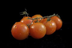 Tomatoes (Warrer) Tags: red food orange reflection green water blackbackground fruit drops hp italian tomatoes fresh stalk studiolighting blackbackdrop tomatovine