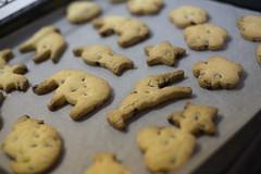 Cookies ! (hugo benichi) Tags: cookies cookie fujifilm 35mmf14 xe2 xf35mmf14