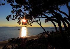 Stella stellina... (scatti_sc Silvia) Tags: sole stella luce tramonto ombre mare spiaggia golfodifollonica golfodelsole follonica toscana maremma raggi