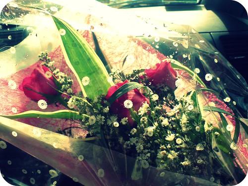 Surprise roses