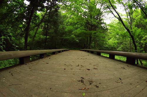 200905301962橋