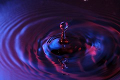 Water Drop Image (D. Knisely's casual snapshots and iPhoneography) Tags: blue red water closeup drops nikon picasa only splash sb26 lumiquest pcsynccord d700 sb900 200f4micro sbiii