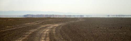 Gobi Desert 17