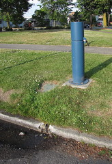 The water runs out from a pipe on the curb underneath this blue pillar. Often birds use the resulting puddle as a birdbath. Photo by Wendi.