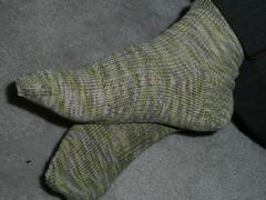 corn socks for roommie