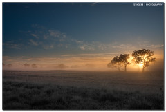 The Future Is Uncertain (Sam Ili) Tags: blue winter sky horse sun mountains color tree grass silhouette fog clouds sunrise harrison country blues australia mount canberra dri hdr act gungahlin explored 450d redbubble canon1022mm3545 horseparkroad
