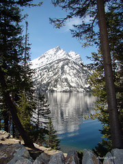 Jenny Lake by dbushue (Darlene Bushue), on Flickr