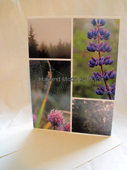 Greeting Card - Purple Dew Covered Images (Pictures by Ann) Tags: flowers moon mist flower nature minnesota collage fog by writing spider hand purple natural web harvest foggy card dew northshore blank letter etsy mosiac greetingcard greeting lakesuperior lupine grandmarais webs penpal harvestmoonbyhand