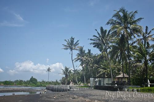 Bali Villa Ylang Ylang 5