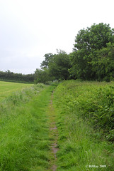 Offa's Dyke Path - Path to Sedbury Cliffs