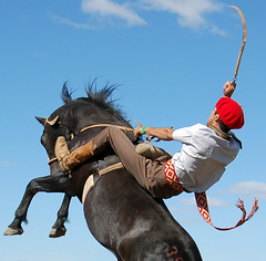 Se despilchando (Eduardo Amorim) Tags: brazil horses horse southamerica brasil caballo cheval caballos cavalos pferde cavalli cavallo cavalo gauchos pferd riograndedosul pampa yara hest hevonen campanha brsil chevaux gaucho  amricadosul paniolo bag fronteira hst gacho  amriquedusud  gachos  sudamrica suramrica amricadelsur  sdamerika jineteada   americadelsud gineteada  americameridionale eduardoamorim