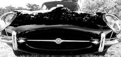 Red Cat (filmonger) Tags: england reflection classic monochrome car cool 60s retro chrome infrared jag british jaguar mojo shag v12