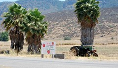 Santa Rosa Valley (freeloosedirt) Tags: tractor sign strawberries dry palm palmtrees drought