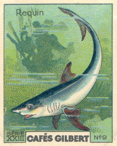 gilbert poissons 9