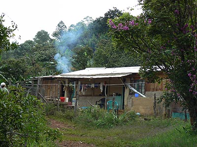 petite maison au coeur du Chiapas.jpg