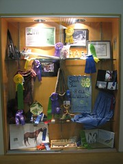 4-H projects on display at the Bay View Library.